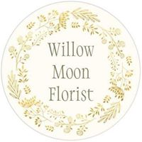 willow moon